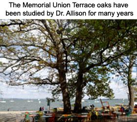 memorial-union-1