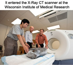 x-ray-ct-scans-8