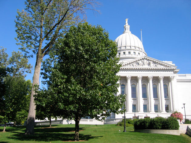 The Wisconsin state capitol building stands on a park-like acre of land graced with century-old trees. Planted in the early 1900's under the direction of landscape architect John Nolen