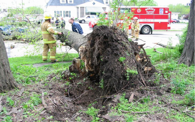 This incident was an uprooting. It exemplifies the importance of an in-tact root plate in order to maintain tree stability.